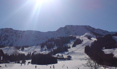 Winter 232x136